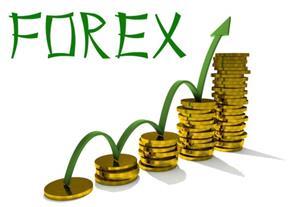 072113 2336 1 Организация торговли на форекс